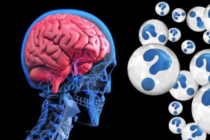 22-Truths-Regarding-Brain.jpg