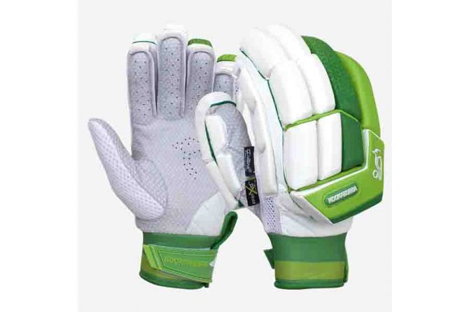 Cricket-Gloves-1.jpg
