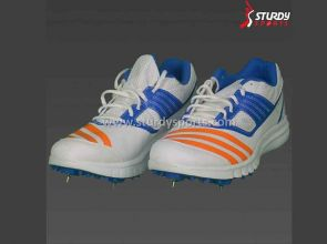 Buyer's Guide  How To Choose Cricket Shoes